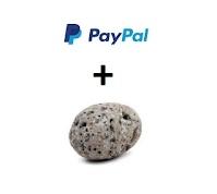 PayPal Rocks